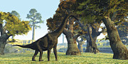 Tree Creature Digital Art Framed Prints - Brachiosaurus Dinosaurs Walk Among Framed Print by Corey Ford