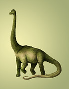 Animal Drawings Posters - Brachiosaurus Poster by Spencer Sutton and Photo Researchers
