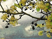 Pears Digital Art Originals - Bradford And Grey Sky by Wide Awake  Arts