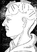 Human Head Art - Brain Functions, Albertus Magnus Woodcut by Science Source