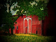 Barn Door Photo Framed Prints - Branch Over Barn Door Framed Print by Joyce  Kimble Smith