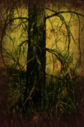 Tree Art Print Mixed Media - Branching Out by Bonnie Bruno