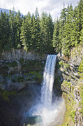 Pacific Northwest Rivers Prints - Brandywine Falls Drop Into A Chasm Print by Taylor S. Kennedy