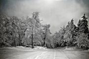 Snowy Road Prints - Break In The Storm Print by Lois Bryan