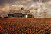 Red Barns Framed Prints - Breaking Through Framed Print by Lois Bryan