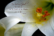 Easter Flowers Posters - Breath of Life Poster by Debra Straub