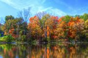 """autumn Reflection"" Photos - Breathless by Robert Pearson"