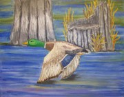 Waterfowl Paintings - Breezing Across the Wetlands by Belinda Lawson
