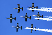 Stunt Prints - Breitling air display team L-39 Albatross Print by Nir Ben-Yosef