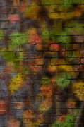 Brick Walls Posters - Brick Wall in Fall Poster by Benanne Stiens