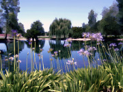 Agapanthus Framed Prints - Briddlewood Vineyards Pond Framed Print by Kurt Van Wagner