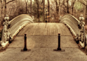 Central Park Photos - Bridge by Ariane Moshayedi