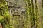 Moss Green Posters - Bridge at Latourell Falls Oregon Poster by Dustin K Ryan