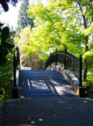 Becca  Feldman - Bridge at Lithia Park