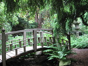 Amy Lobenthal - Bridge at Stan Hywet...