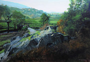 Harry Robertson - Bridge below Aberglaslyn