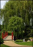 Forest Photographs Posters - Bridge in Japanese Garden Poster by Tam Graff
