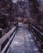 Eerie Mixed Media Prints - Bridge in the Shenandoah Print by Susan  Epps Oliver