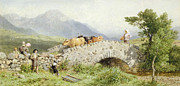 Cattle Framed Prints - Bridge Near Dalmally Framed Print by Myles Birket Foster
