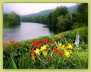 Shelburne Falls Prints - Bridge of Flowers Print by Linda Galok