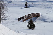 Snow Scape Posters - Bridge Over Frozen Water Poster by Rick  Monyahan