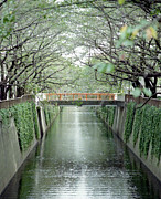 Japanese Culture Framed Prints - Bridge Over Meguro River Framed Print by Masahiro Hayata