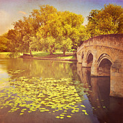 Tree Leaf On Water Posters - Bridge Over River Poster by Photo - Lyn Randle
