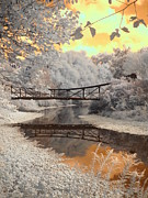 Infrared Art - Bridge Reflections by Jane Linders