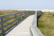 Florida Bridge Posters - Bridge to the Beach Poster by Glennis Siverson