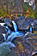 Colorado Stream Posters - Bridge To The Seasons Poster by Scott Mahon