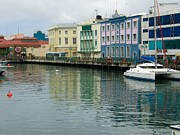 Catamaran Prints - Bridgetown Harbor Print by Sophie Vigneault