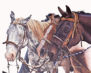 White Horse Paintings - Bridle Gossip by JK Dooley