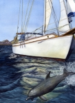 Sailboat Ocean Paintings - Brief Encounter by Catherine G McElroy