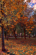Day Pyrography Prints - Bright autumn days Print by Gennadiy Golovskoy