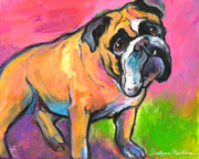 Commissioned Austin Portraits Framed Prints - Bright Bulldog portrait painting  Framed Print by Svetlana Novikova