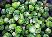 Healthy Eating Art - Bright Green Fresh Brussels Sprouts by Mimi  Haddon
