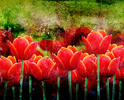 Bright Red Textured Tulip Flower Print by Angela Waye