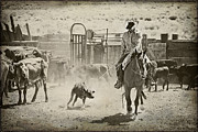 Western Art Photos - Bringin Em To The Fire by Megan Chambers