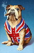 British Bulldog Print by Andrew Farley