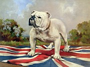 Blue And White Framed Prints - British Bulldog Framed Print by English School