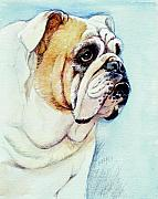 Bulldog Paintings - British Bulldog by Morgan Fitzsimons