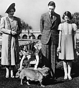 Princess Margaret Framed Prints - British Royal Family. From Left British Framed Print by Everett