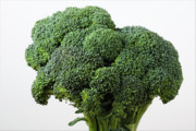 Broccoli Photo Prints - Broccoli Print by Robert Ullmann