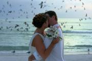 Brodecky Wedding 2 Print by Randy Matthews