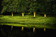 Golden Sky Prints - Broemmelsiek Park Green Print by Bill Tiepelman