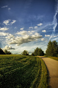 Golden Sky Prints - Broemmelsiek Park Walking Track Print by Bill Tiepelman