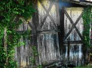 Barn Door Posters - Broken Barn door Poster by Joyce  Kimble Smith