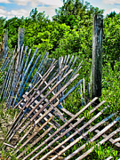 Beach Fence Posters - Broken Beach Fence Poster by Colleen Kammerer