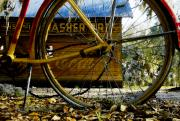 Grocer Prints - Broken bicycle Print by David Lee Thompson