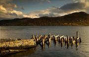 Rural Landscapes Prints - Broken Dock, Loch Sunart, Scotland Print by John Short
